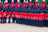 The Colonel's Review 2014. Horse Guards Parade, Westminster, London,  United Kingdom, on 07 June 2014 at 11:29, image #458
