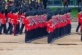The Colonel's Review 2014. Horse Guards Parade, Westminster, London,  United Kingdom, on 07 June 2014 at 11:29, image #459