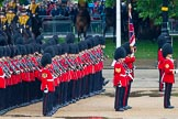 The Colonel's Review 2014. Horse Guards Parade, Westminster, London,  United Kingdom, on 07 June 2014 at 11:29, image #461
