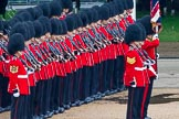 The Colonel's Review 2014. Horse Guards Parade, Westminster, London,  United Kingdom, on 07 June 2014 at 11:29, image #463