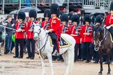 The Colonel's Review 2014. Horse Guards Parade, Westminster, London,  United Kingdom, on 07 June 2014 at 11:32, image #467