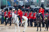 The Colonel's Review 2014. Horse Guards Parade, Westminster, London,  United Kingdom, on 07 June 2014 at 11:32, image #468