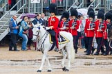 The Colonel's Review 2014. Horse Guards Parade, Westminster, London,  United Kingdom, on 07 June 2014 at 11:32, image #469