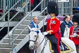 The Colonel's Review 2014. Horse Guards Parade, Westminster, London,  United Kingdom, on 07 June 2014 at 11:32, image #470