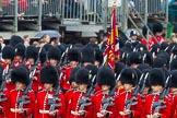 The Colonel's Review 2014. Horse Guards Parade, Westminster, London,  United Kingdom, on 07 June 2014 at 11:32, image #473