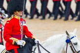 The Colonel's Review 2014. Horse Guards Parade, Westminster, London,  United Kingdom, on 07 June 2014 at 11:33, image #477