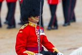 The Colonel's Review 2014. Horse Guards Parade, Westminster, London,  United Kingdom, on 07 June 2014 at 11:33, image #478