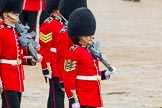 The Colonel's Review 2014. Horse Guards Parade, Westminster, London,  United Kingdom, on 07 June 2014 at 11:33, image #479