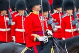 The Colonel's Review 2014. Horse Guards Parade, Westminster, London,  United Kingdom, on 07 June 2014 at 11:33, image #481