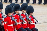 The Colonel's Review 2014. Horse Guards Parade, Westminster, London,  United Kingdom, on 07 June 2014 at 11:33, image #482
