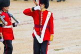The Colonel's Review 2014. Horse Guards Parade, Westminster, London,  United Kingdom, on 07 June 2014 at 11:33, image #484
