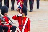 The Colonel's Review 2014. Horse Guards Parade, Westminster, London,  United Kingdom, on 07 June 2014 at 11:33, image #485