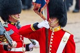 The Colonel's Review 2014. Horse Guards Parade, Westminster, London,  United Kingdom, on 07 June 2014 at 11:33, image #486
