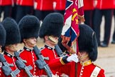 The Colonel's Review 2014. Horse Guards Parade, Westminster, London,  United Kingdom, on 07 June 2014 at 11:34, image #487