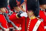 The Colonel's Review 2014. Horse Guards Parade, Westminster, London,  United Kingdom, on 07 June 2014 at 11:34, image #489