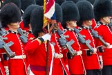 The Colonel's Review 2014. Horse Guards Parade, Westminster, London,  United Kingdom, on 07 June 2014 at 11:34, image #490