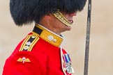 The Colonel's Review 2014. Horse Guards Parade, Westminster, London,  United Kingdom, on 07 June 2014 at 11:34, image #492