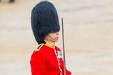 The Colonel's Review 2014. Horse Guards Parade, Westminster, London,  United Kingdom, on 07 June 2014 at 11:34, image #493