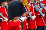 The Colonel's Review 2014. Horse Guards Parade, Westminster, London,  United Kingdom, on 07 June 2014 at 11:34, image #495