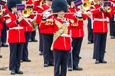 The Colonel's Review 2014. Horse Guards Parade, Westminster, London,  United Kingdom, on 07 June 2014 at 11:35, image #497