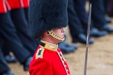 The Colonel's Review 2014. Horse Guards Parade, Westminster, London,  United Kingdom, on 07 June 2014 at 11:35, image #499
