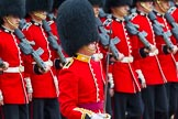 The Colonel's Review 2014. Horse Guards Parade, Westminster, London,  United Kingdom, on 07 June 2014 at 11:35, image #502