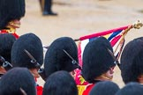 The Colonel's Review 2014. Horse Guards Parade, Westminster, London,  United Kingdom, on 07 June 2014 at 11:35, image #504