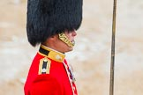 The Colonel's Review 2014. Horse Guards Parade, Westminster, London,  United Kingdom, on 07 June 2014 at 11:35, image #507