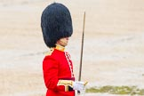 The Colonel's Review 2014. Horse Guards Parade, Westminster, London,  United Kingdom, on 07 June 2014 at 11:35, image #511