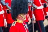 The Colonel's Review 2014. Horse Guards Parade, Westminster, London,  United Kingdom, on 07 June 2014 at 11:36, image #512