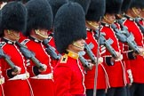 The Colonel's Review 2014. Horse Guards Parade, Westminster, London,  United Kingdom, on 07 June 2014 at 11:36, image #515
