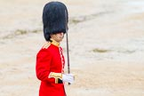 The Colonel's Review 2014. Horse Guards Parade, Westminster, London,  United Kingdom, on 07 June 2014 at 11:36, image #516