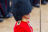 The Colonel's Review 2014. Horse Guards Parade, Westminster, London,  United Kingdom, on 07 June 2014 at 11:36, image #519