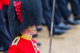 The Colonel's Review 2014. Horse Guards Parade, Westminster, London,  United Kingdom, on 07 June 2014 at 11:37, image #523