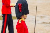 The Colonel's Review 2014. Horse Guards Parade, Westminster, London,  United Kingdom, on 07 June 2014 at 11:37, image #524