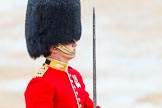 The Colonel's Review 2014. Horse Guards Parade, Westminster, London,  United Kingdom, on 07 June 2014 at 11:37, image #525