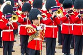 The Colonel's Review 2014. Horse Guards Parade, Westminster, London,  United Kingdom, on 07 June 2014 at 11:38, image #526