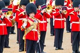 The Colonel's Review 2014. Horse Guards Parade, Westminster, London,  United Kingdom, on 07 June 2014 at 11:38, image #527