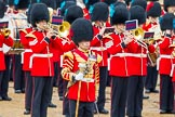 The Colonel's Review 2014. Horse Guards Parade, Westminster, London,  United Kingdom, on 07 June 2014 at 11:38, image #528