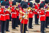 The Colonel's Review 2014. Horse Guards Parade, Westminster, London,  United Kingdom, on 07 June 2014 at 11:38, image #529