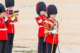 The Colonel's Review 2014. Horse Guards Parade, Westminster, London,  United Kingdom, on 07 June 2014 at 11:38, image #530
