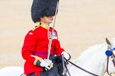 The Colonel's Review 2014. Horse Guards Parade, Westminster, London,  United Kingdom, on 07 June 2014 at 11:38, image #531