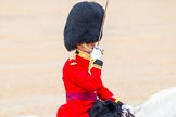 The Colonel's Review 2014. Horse Guards Parade, Westminster, London,  United Kingdom, on 07 June 2014 at 11:38, image #532