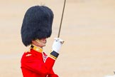 The Colonel's Review 2014. Horse Guards Parade, Westminster, London,  United Kingdom, on 07 June 2014 at 11:38, image #533