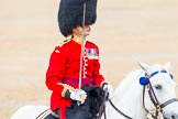 The Colonel's Review 2014. Horse Guards Parade, Westminster, London,  United Kingdom, on 07 June 2014 at 11:38, image #534