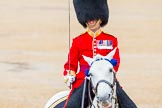 The Colonel's Review 2014. Horse Guards Parade, Westminster, London,  United Kingdom, on 07 June 2014 at 11:38, image #535