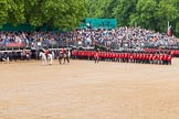 The Colonel's Review 2014. Horse Guards Parade, Westminster, London,  United Kingdom, on 07 June 2014 at 11:43, image #540