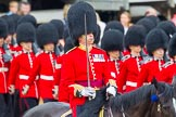 The Colonel's Review 2014. Horse Guards Parade, Westminster, London,  United Kingdom, on 07 June 2014 at 11:43, image #542