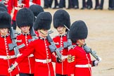 The Colonel's Review 2014. Horse Guards Parade, Westminster, London,  United Kingdom, on 07 June 2014 at 11:43, image #543