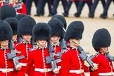 The Colonel's Review 2014. Horse Guards Parade, Westminster, London,  United Kingdom, on 07 June 2014 at 11:43, image #544